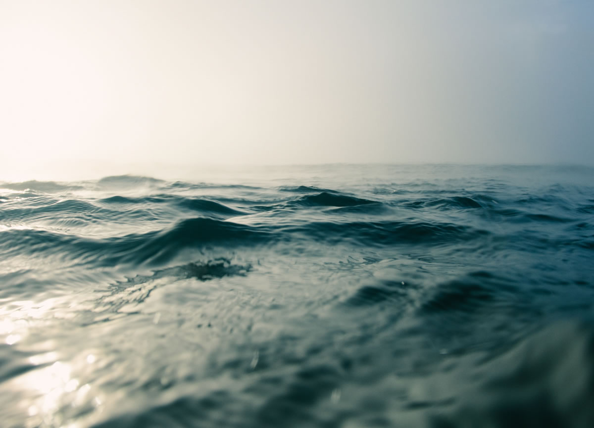 How to harness the power of marine extracts on your cruise
