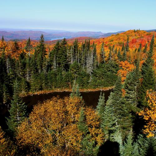 Which U.S. hotels have the best fall foliage views?